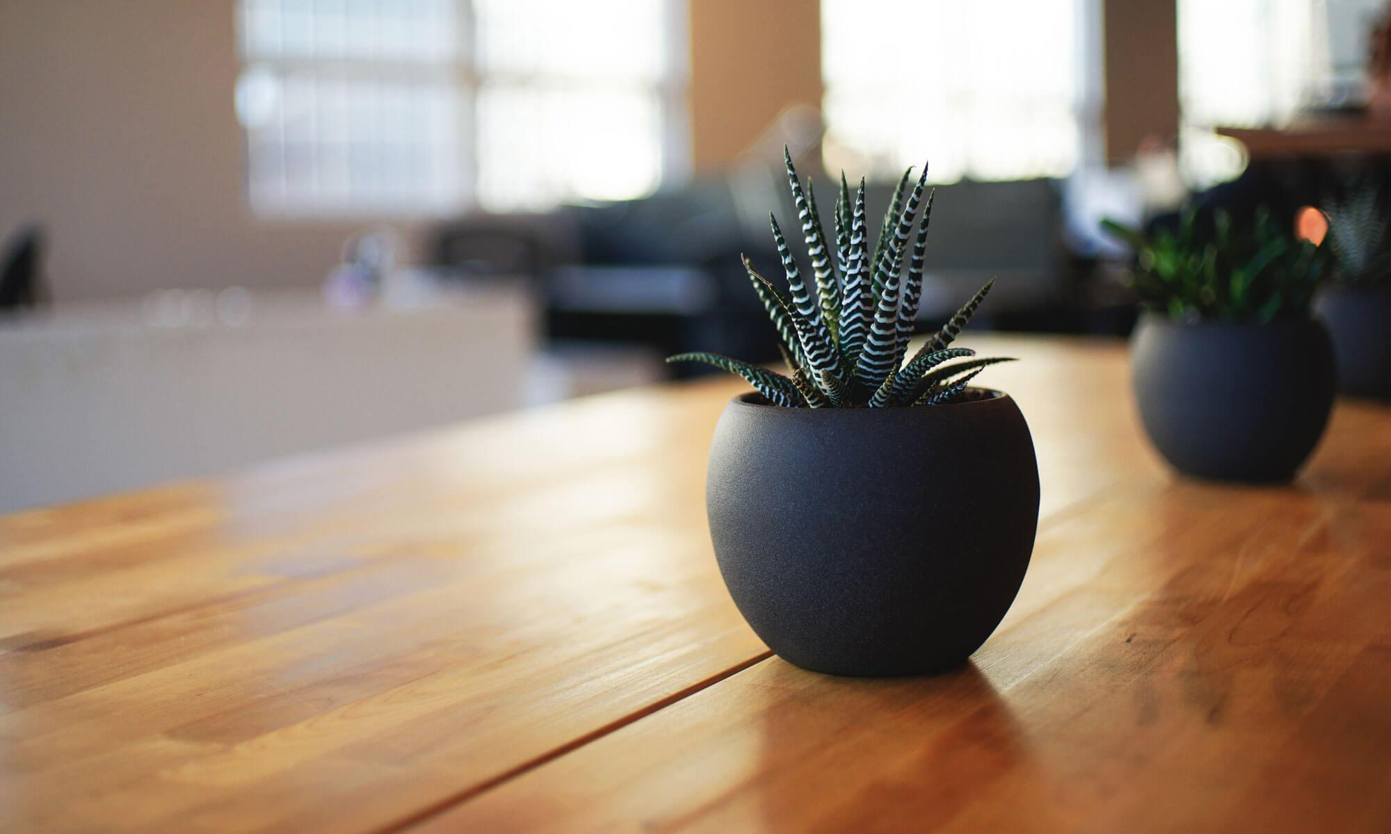 GrowthLynx